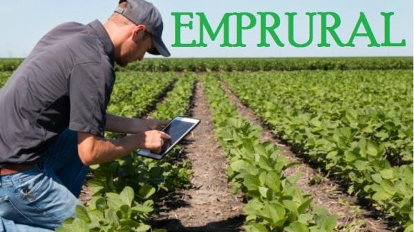 """Proxecto """"EMPRURAL: emprendemento xuvenil no rural"""", edición 2019"""