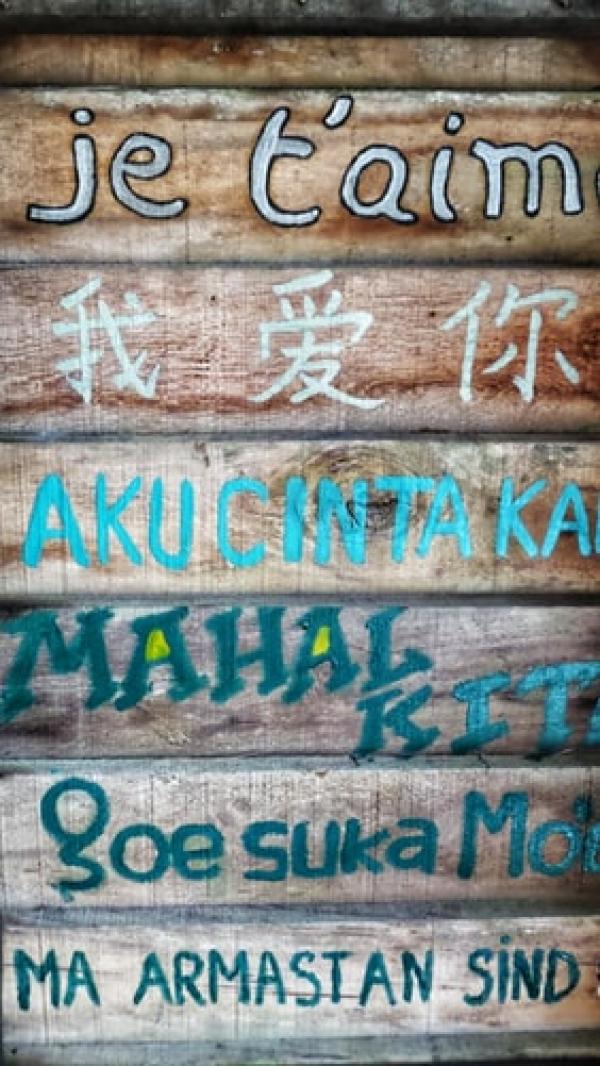 Queres aprender novos idiomas?