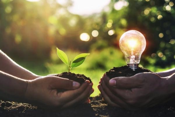 Fomento do uso das enerxías renovables