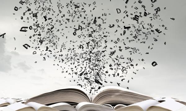 """XIII certame literario """"Terras de Chamoso"""""""