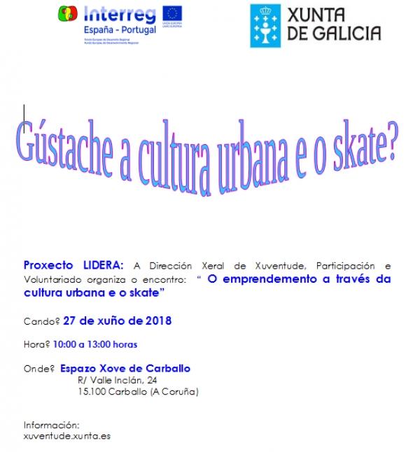 """Encontro sectorial no Espazo Xove de Carballo: """"O emprendemento a través da  cultura urbana e o skate"""""""
