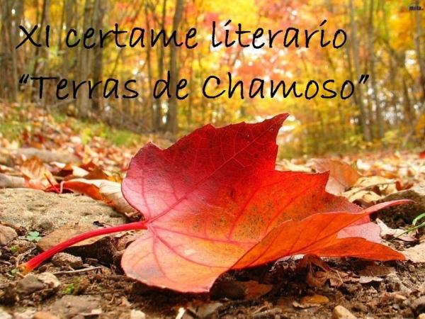 """XI certame literario """"Terras de Chamoso"""""""