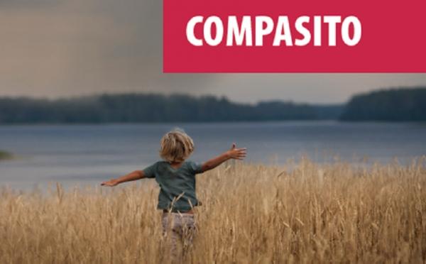 Curso de formación Compasito para a educación en dereitos humanos con nenos
