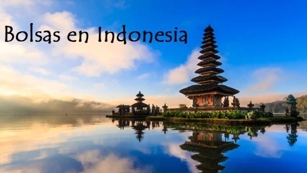 Bolsas para aprender idiomas en Indonesia