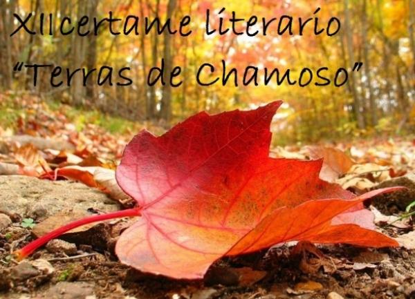 """XII certame literario """"Terras de Chamoso"""""""