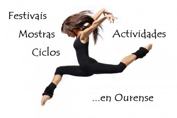 Realización de festivais, ciclos, mostras ou actividades análogas na provincia de Ourense