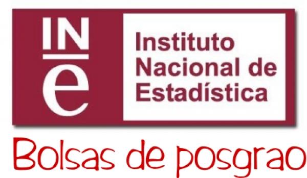 Bolsas posgrao en estatística no INE