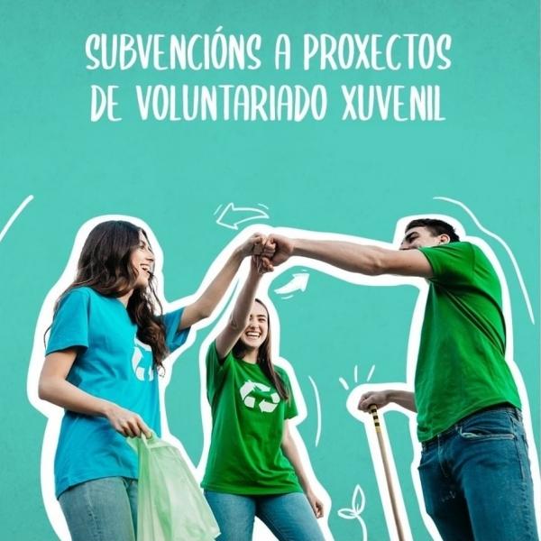 Axudas concedidas a través do programa Servizo de voluntariado xuvenil