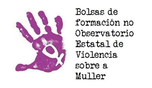 Bolsas de formación no Observatorio Estatal de Violencia sobre a Muller