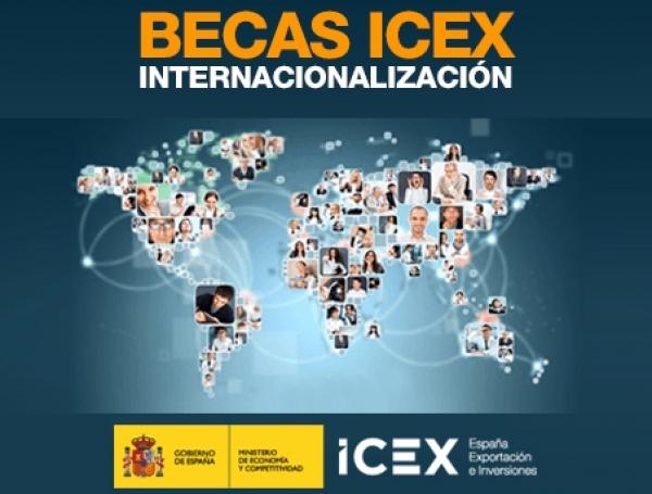 Bolsas en internacionalización empresarial