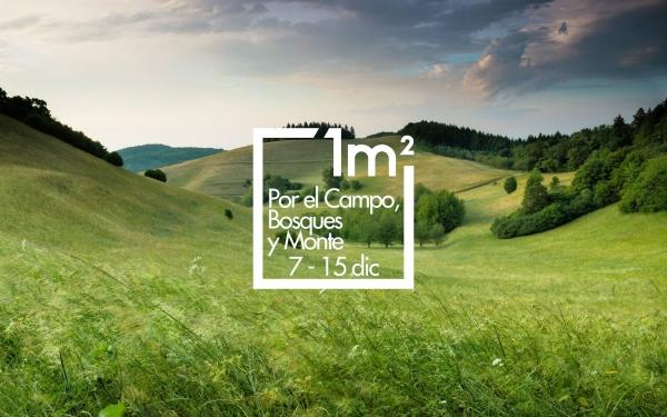 1 m2 polo Campo, o Monte e os Bosques