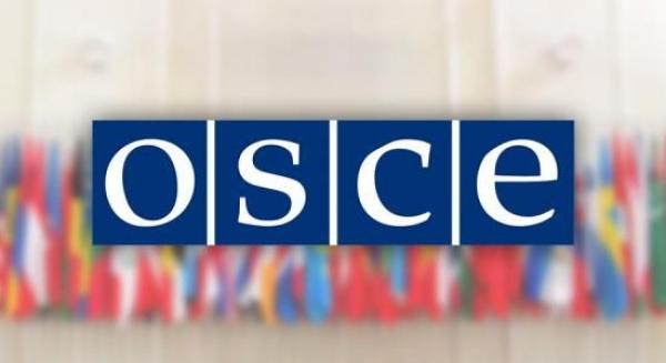 Programa de asistencia á investigación da OSCE