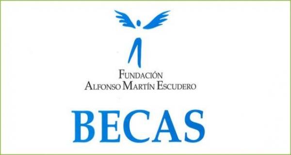 Bolsas de investigación da Fundación Alfonso Martín Escudero