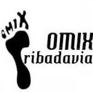 Obradoiros organizados pola OMIX de Ribadavia