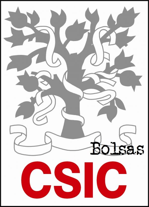 250 bolsas no CSIC