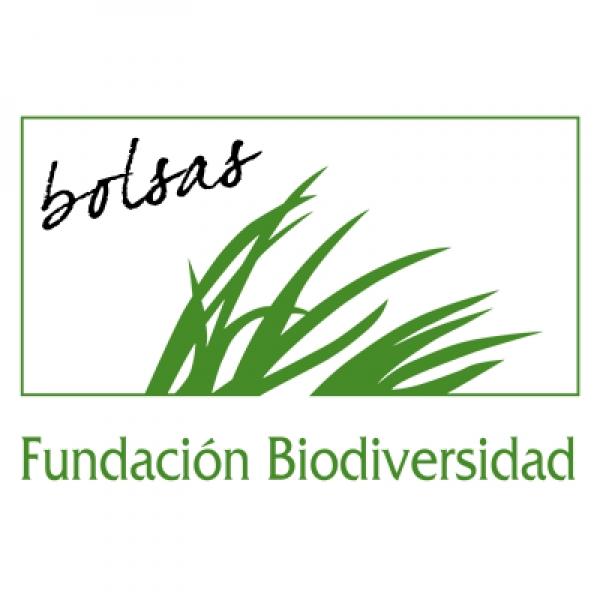 Bolsas na Fundación Biodiversidade
