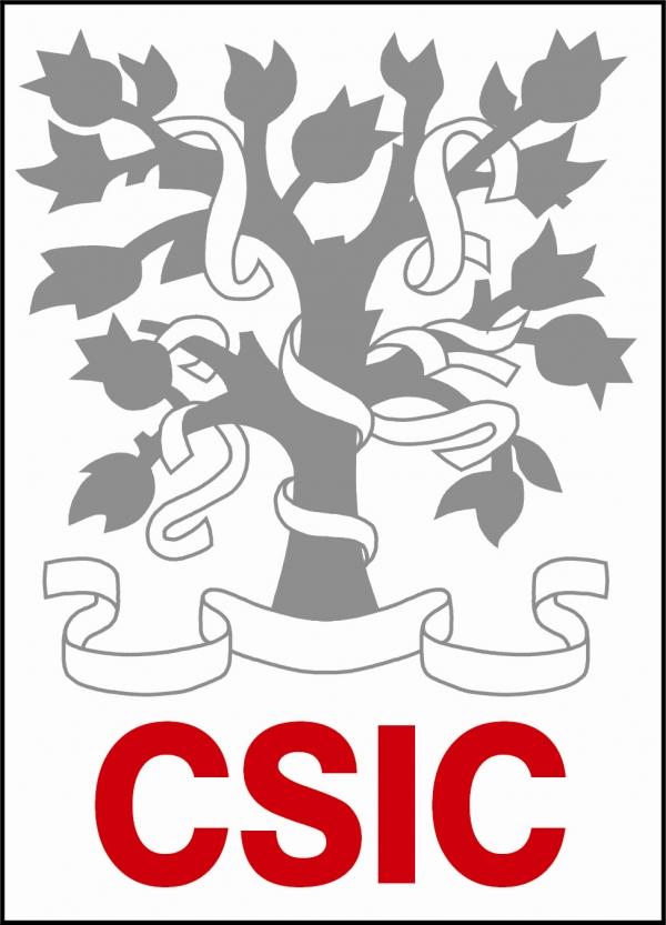 100 Bolsas no CSIC