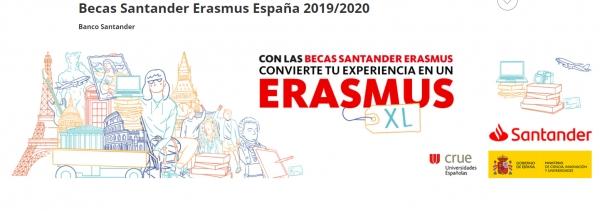 Bolsas Erasmus XL