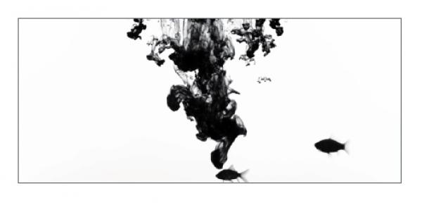 V Premio Galicia de Fotografía Contemporánea