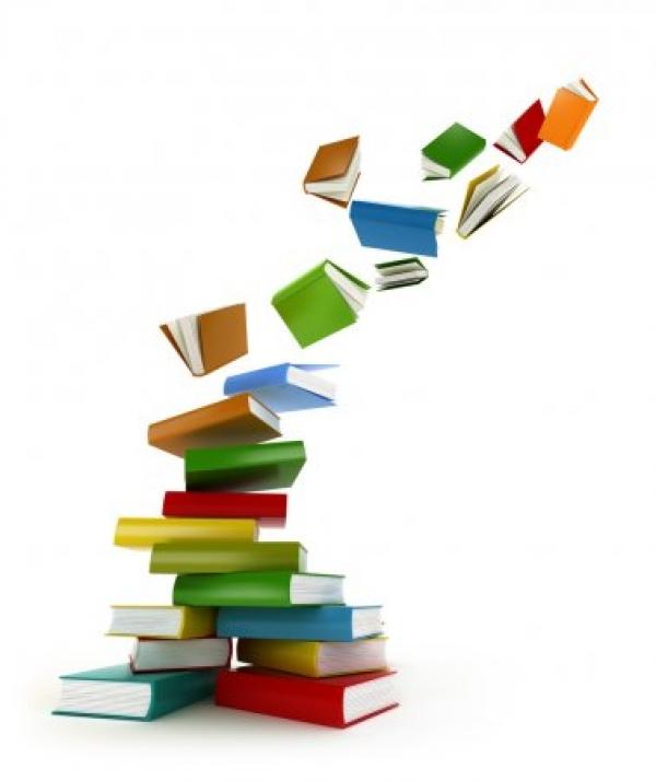 Bolsas de formación en biblioteconomía