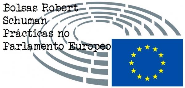 Bolsas Robert Schuman, Prácticas no Parlamento Europeo