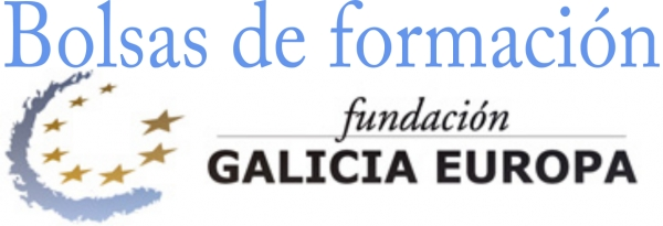 Bolsas da Fundación Galicia Europa