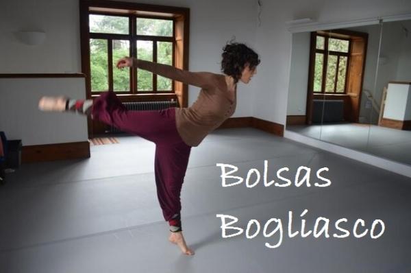 Bolsas artísticas da Fundación Bogliasco