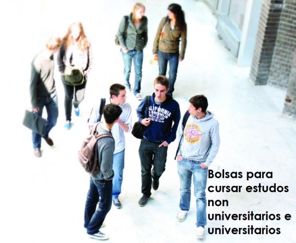 Bolsas para cursar estudos non universitarios e universitarios