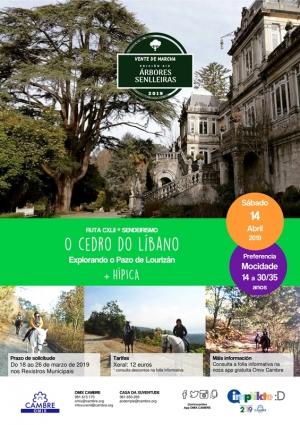 """Ruta """"O Cedro do Líbano"""" + Hípica en Cambre"""
