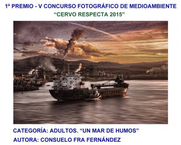 """VI Concurso de fotografía medioambiental """"Xove, a súa costa e o seu mar"""""""