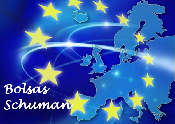 Bolsas Shuman no Parlamento Europeo