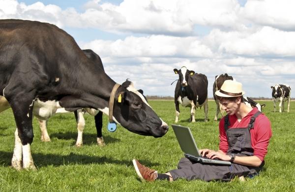 Axudas á creación de empresas por persoas agricultoras mozas