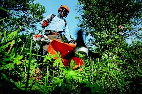 Fomento do emprego, Aprol Rural