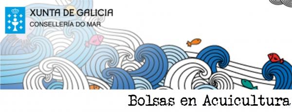 Bolsas de formación para titulados/as en ciclos formativos de acuicultura