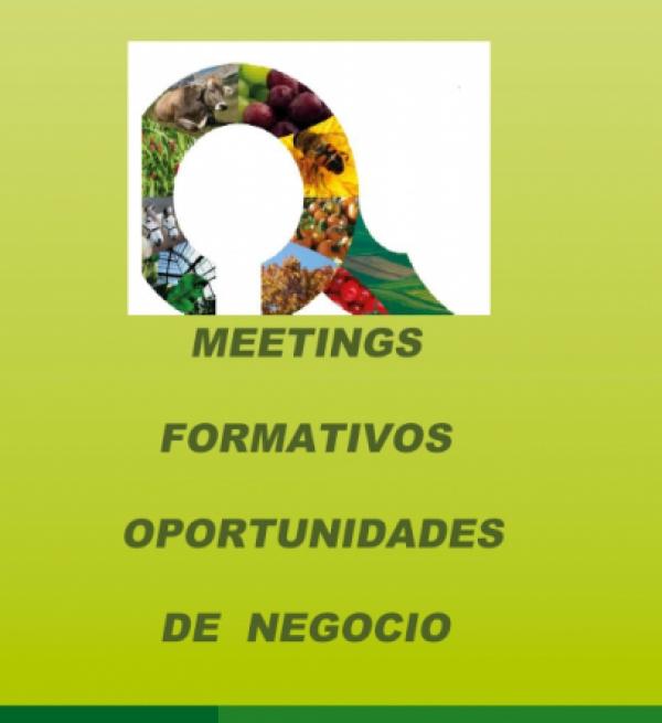 Meetings Formativos Oportunidades de Negocio