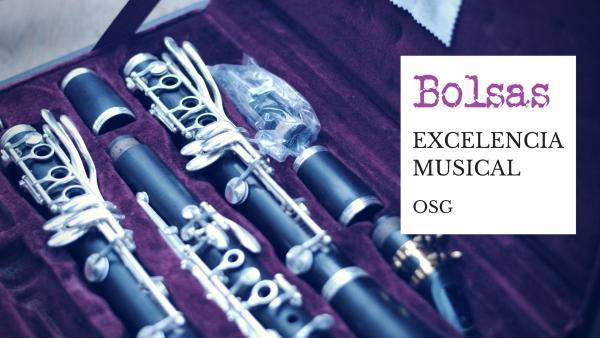 Bolsas de excelencia musical para o curso 2017-2018