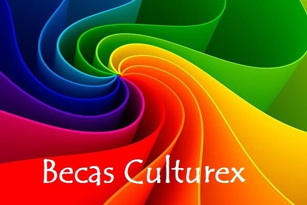 Becas Culturex