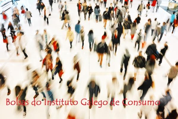 Bolsas de formación no Instituto Galego de Consumo