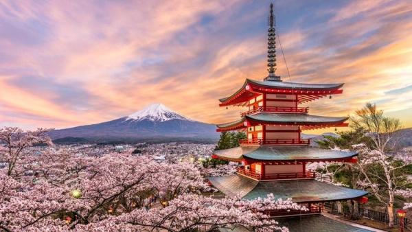 Bolsas de estudo de cultura xaponesa