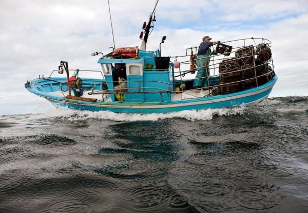 Bolsas no Ministerio de Pesca